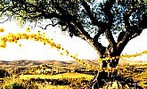 L'Occitane katalog Provence
