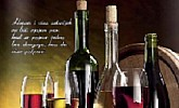 Mercator Getro katalog vina