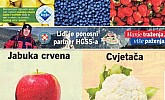Lidl katalog tržnica do 27.2.