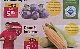 Lidl katalog tržnica do 29.7.