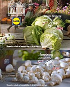 Lidl katalog Tržnica do 13.1.