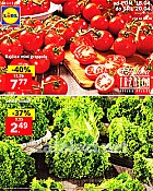 Lidl katalog tržnica do 20.4.