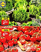 Lidl katalog tržnica do 18.5.