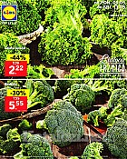 Lidl katalog tržnica do 11.5.