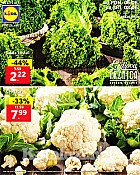 Lidl katalog tržnica do 8.6.