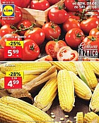 Lidl katalog tržnica do 10.8.
