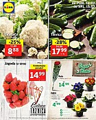 Lidl katalog tržnica do 15.2.
