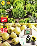 Lidl katalog tržnica do 15.3.