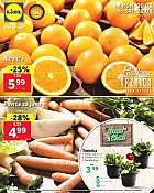 Lidl katalog tržnica do 22.3.