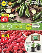 Lidl katalog tržnica do 24.5.