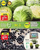 Lidl katalog tržnica do 31.5.