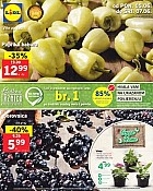 Lidl katalog tržnica do 7.6.