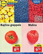 Lidl katalog Tržnica do 2.5.