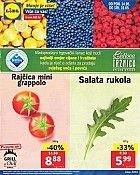 Lidl katalog Tržnica do 16.5.