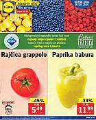 Lidl katalog tržnica do 20.6.