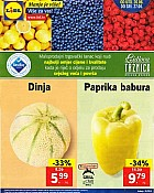 Lidl katalog tržnica do 27.6.