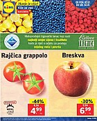 Lidl katalog tržnica do 4.7.