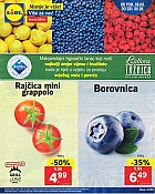 Lidl katalog tržnica do 8.8.