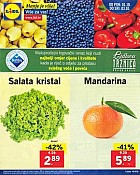 Lidl katalog Tržnica do 3.10.