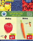 Lidl katalog tržnica do 12.9.