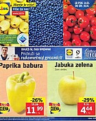 Lidl katalog tržnica do 16.1.