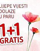 DM katalog 1+1 gratis do 31.3.