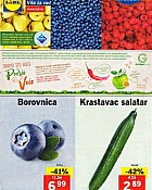 Lidl katalog tržnica do 24.4.