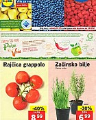 Lidl katalog tržnica do 1.5.