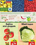Lidl katalog tržnica do 15.5.