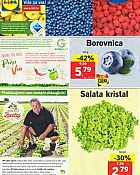 Lidl katalog tržnica do 22.5.