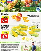 Lidl katalog tržnica do 10.7.