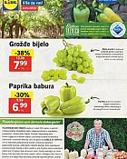 Lidl katalog tržnica do 4.9.