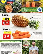Lidl katalog tržnica do 7.8.