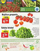 Lidl katalog tržnica do 25.9.