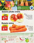 Lidl katalog tržnica do 2.10.