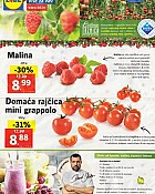 Lidl katalog tržnica do 11.12.