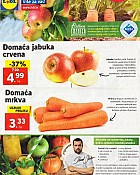 Lidl katalog tržnica do 31.12.