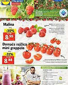 Lidl katalog tržnica do 4.12.