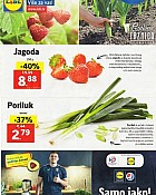 Lidl katalog tržnica do 29.1.
