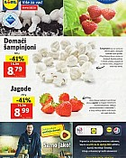 Lidl katalog tržnica do 15.1.