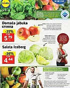 Lidl katalog tržnica do 11.3.