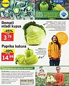 Lidl katalog tržnica do 29.4.