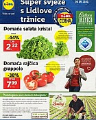 Lidl katalog tržnica do 20.5.