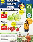 Lidl katalog tržnica do 3.6.