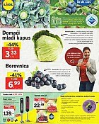 Lidl katalog Tržnica do 13.5.