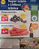 Lidl katalog tržnica do 1.7.
