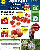 Lidl katalog tržnica do 9.6.