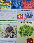 Lidl katalog tržnica do 22.7.