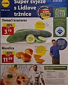 Lidl katalog tržnica do 8.7.