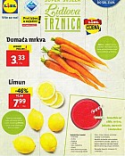 Lidl katalog tržnica do 23.9.